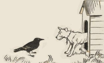 Crow and Dog