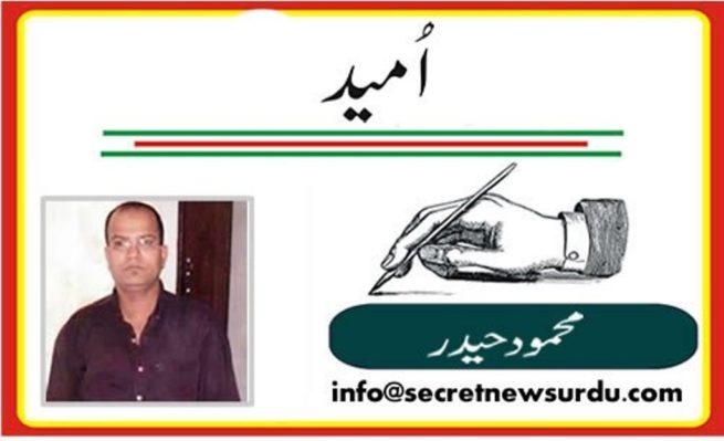 Mehmood Haider