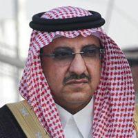 Prince Mohammad bin Nayef