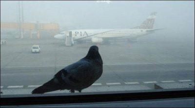 Karachi Airport Fog