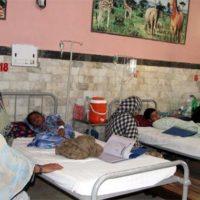 Chikungunya Patient