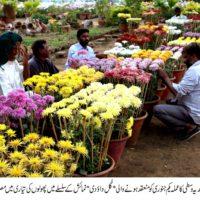 Department Gardens Staff