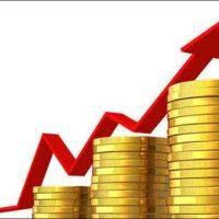 Pakistani Economy