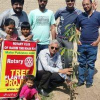 Rotary Tree Plantation