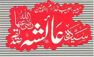 نبی اکرم کی حضرت عا ئشہ رضی اللہ تعالی عنٰہ
