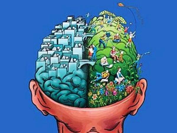 ڈارونزم کے خلاف عقلی اور شعوری جدوجہد کی اہمیت
