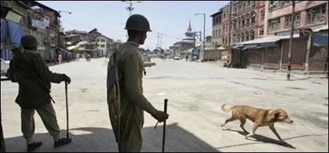سرینگر: بھارتی فوج کا 5 مجاہدین کو شہید کرنے کا دعوی
