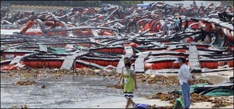 شمالی اور جنوبی کوریا میں سمندری طوفان سے 14 افراد ہلاک