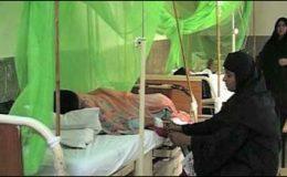 پنجاب میں ڈینگی کے مریضوں میں اضافہ،67 نئے مریض رجسٹرڈ