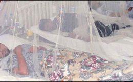 پنجاب میں ڈینگی سے ہلاکتوں کی تعداد 124 تک جا پہنچی