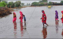 بدین کے سیلاب متاثرین ٹھٹھہ منتقل کیے جائیں گے