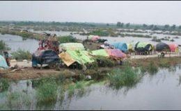 بدین اور عمرکوٹ میں موسلادھار بارش کا سلسلہ جاری