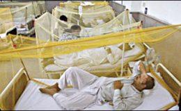 پنجاب میں ڈینگی بخار سے ہلاکتوں کی تعداد 322 ہو گئی