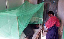 پنجاب: ڈینگی سے مزید تین افراد چل بسے، تعداد 368 ہو گئی