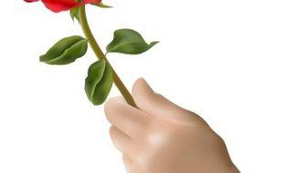 پھول کا تحفہ عطا ہونے پر