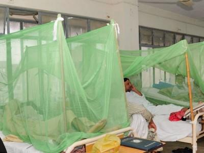 Congo, Dengue
