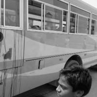 Safora Bus Firing
