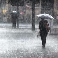 Heavy Rains