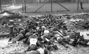 دوسری عالمی جنگ: ہالوکاسٹ