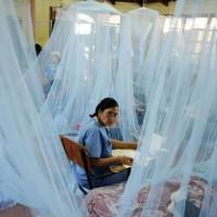 Dengue Effected