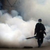 Dengue Spraying