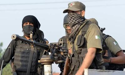 Pakistan Forces