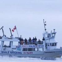 Canada Boat Sank