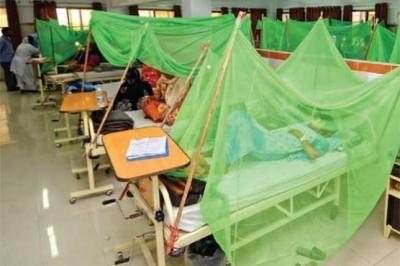 Dengue Virus Patients
