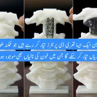 Published Bone Implant