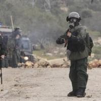 Israeli Force