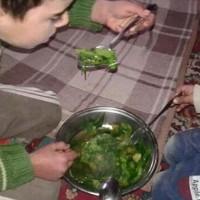 Child Eat Grass