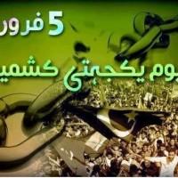 Kashmir Solidarity Day, Pakistani Nation