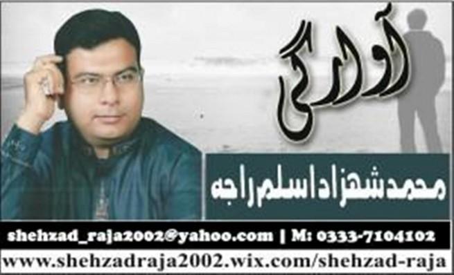 Shehzad Aslam Raja