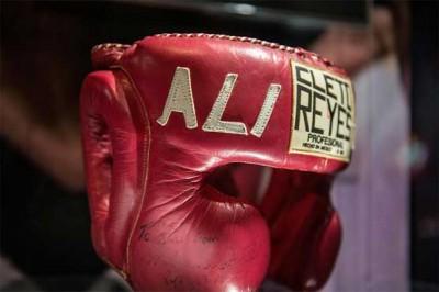 Boxing Glues
