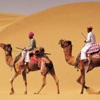 Cholistan Desert