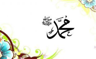 حضرت محمد بن مسلمہ کے پیرو کار