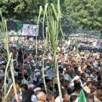 Sugarcane Farmers Protest