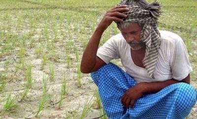 Farmer Suicide