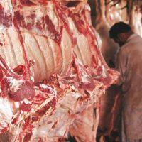 Harmful Meat