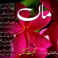 Nighat Sohail