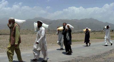Afghanistani Migration