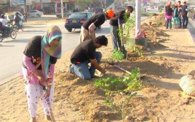 Karachi Planting