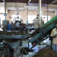 Tea Factories