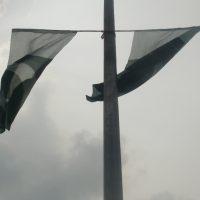 Pakistani Flage
