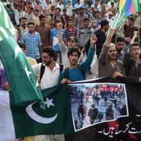 Pakistanis Protest Kashmir killings