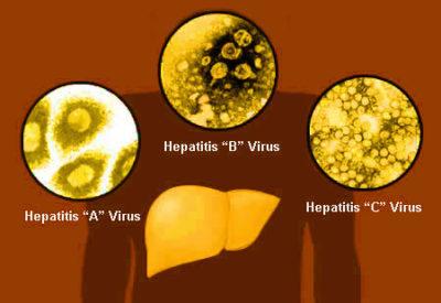 Hepatitis Viruse