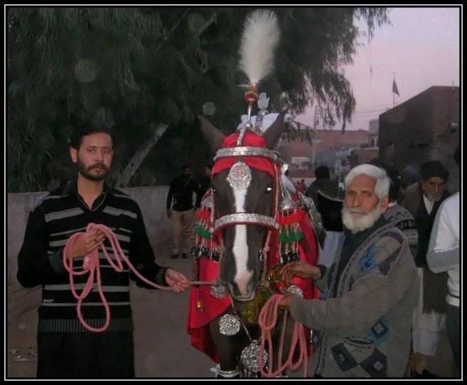 Shahswar e Karbala ki Shahswari ko Salam