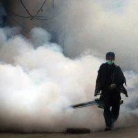 Spray Campaign