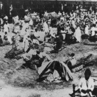 Migration 1947