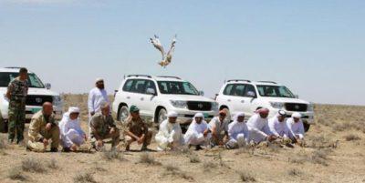 Arabs Hunting in Pakistan